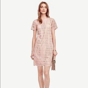 Rosebud Pink Petite Mosaic Lace Shift Dress